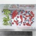 Liebherr ICNdi5173-20 inbouw koelkast - No-Frost - nis 178 cm.