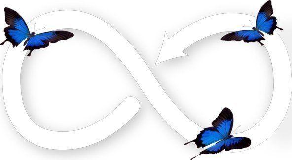 Ook de nieuwe Asko drogers zijn uitgevoerd met een (verbeterd) Butterfly droogsysteem